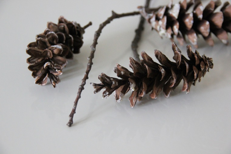 Pine Cone Giftwrap