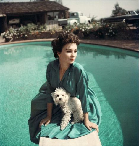 Jean Simmons Photographed by Baron c. 1953